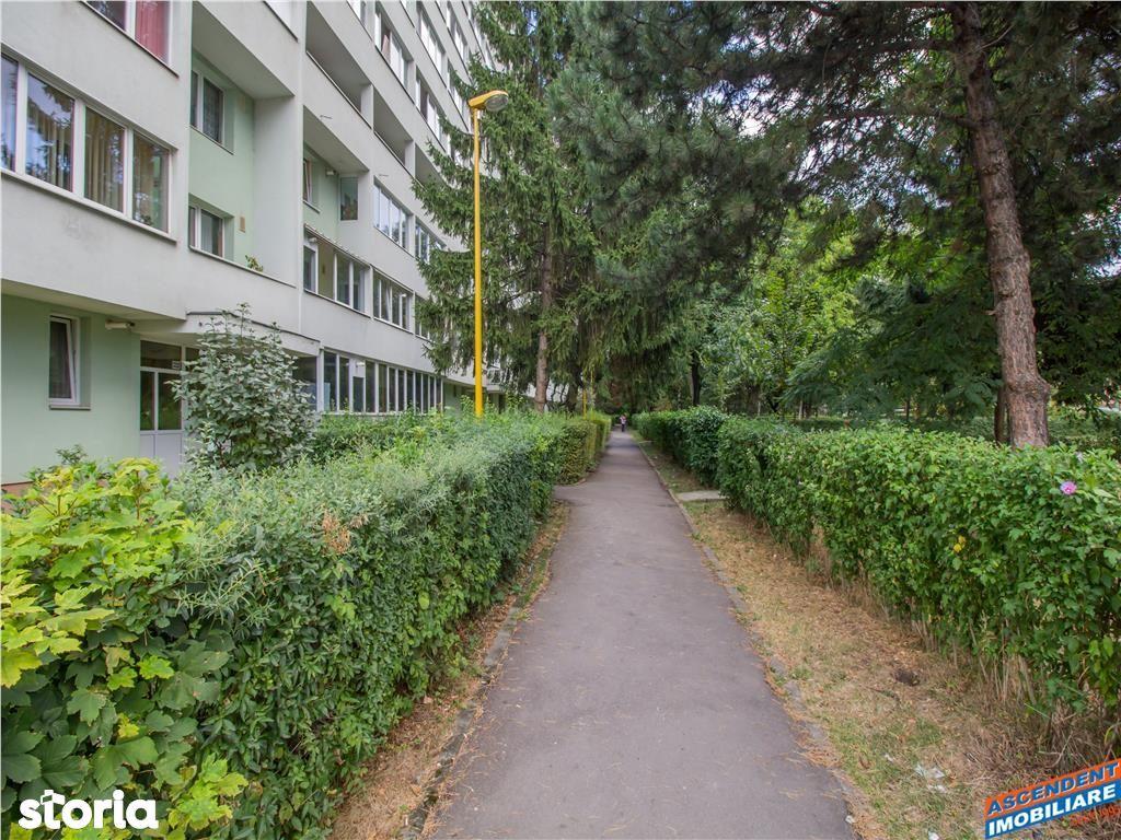 Apartament de vanzare, Brașov (judet), Bulevardul Saturn - Foto 10