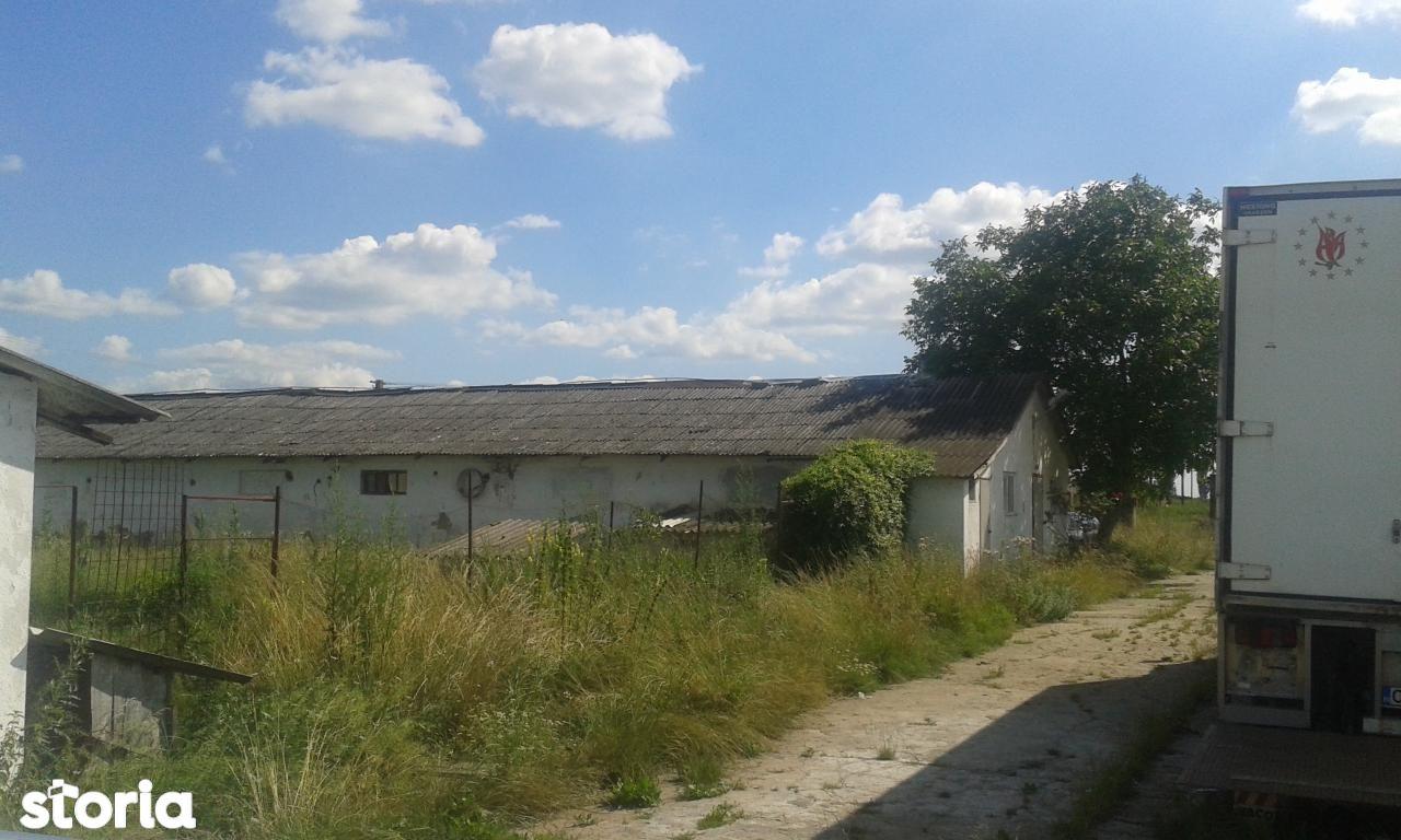 Depozit / Hala de vanzare, Caraș-Severin (judet), Berzovia - Foto 4