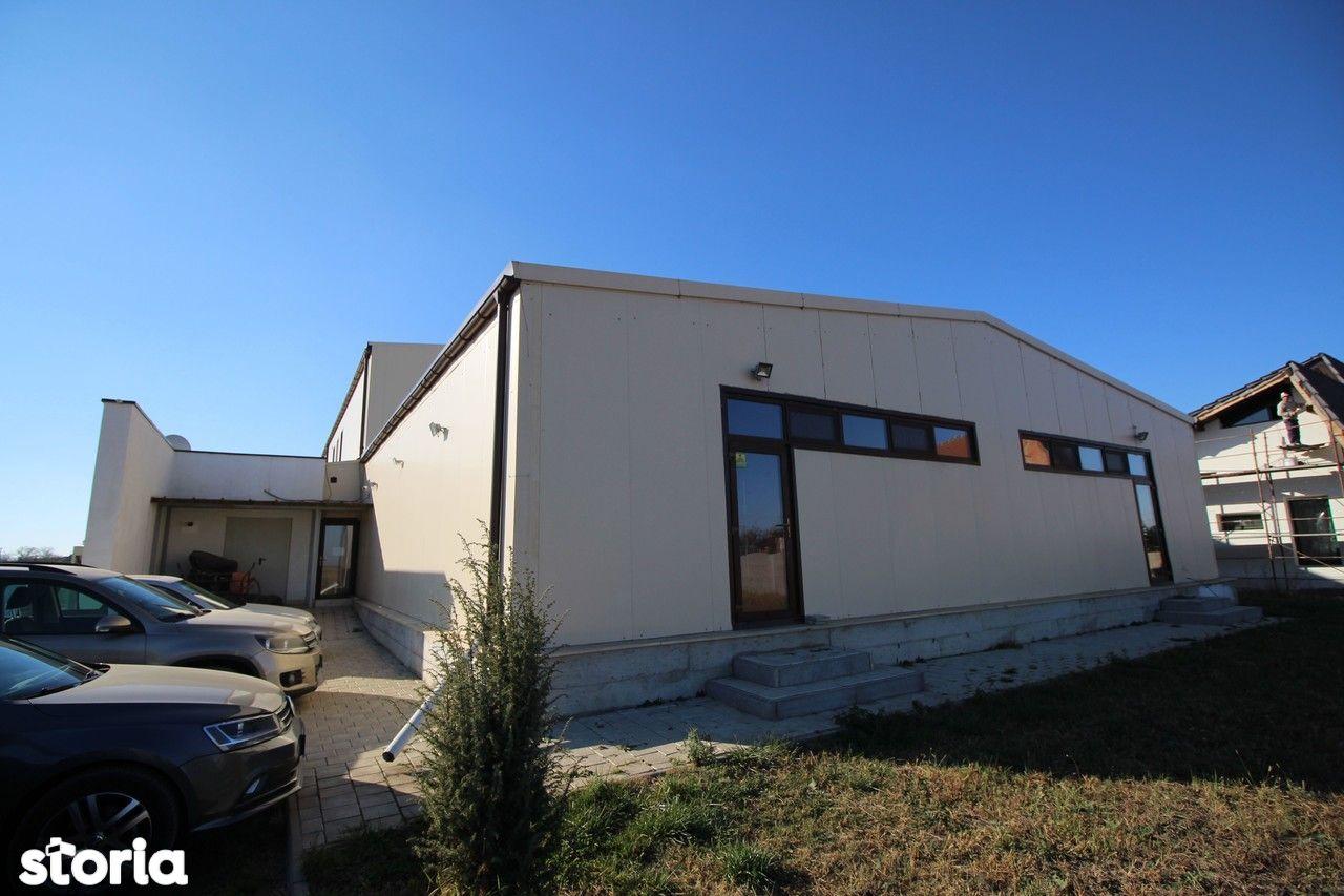 Birou de inchiriat, Timiș (judet), Strada Szentes - Foto 1