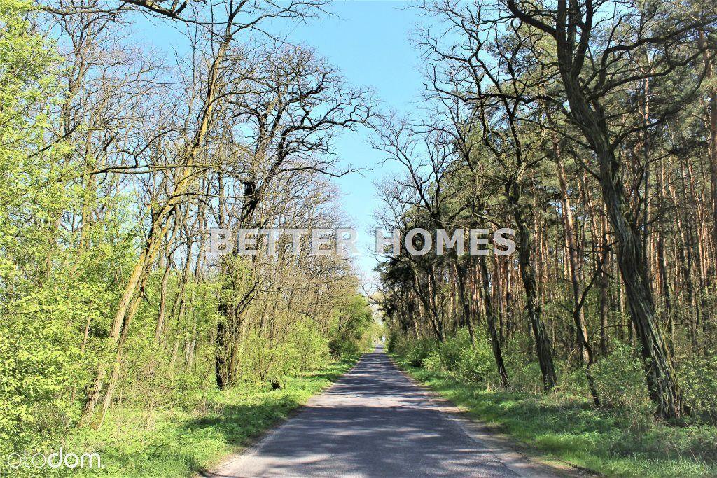 Dom na sprzedaż, Stare Rybitwy, lipnowski, kujawsko-pomorskie - Foto 19