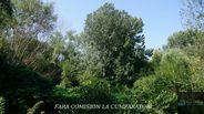 Teren de Vanzare, Vâlcea (judet), Râmnicu Vâlcea - Foto 7