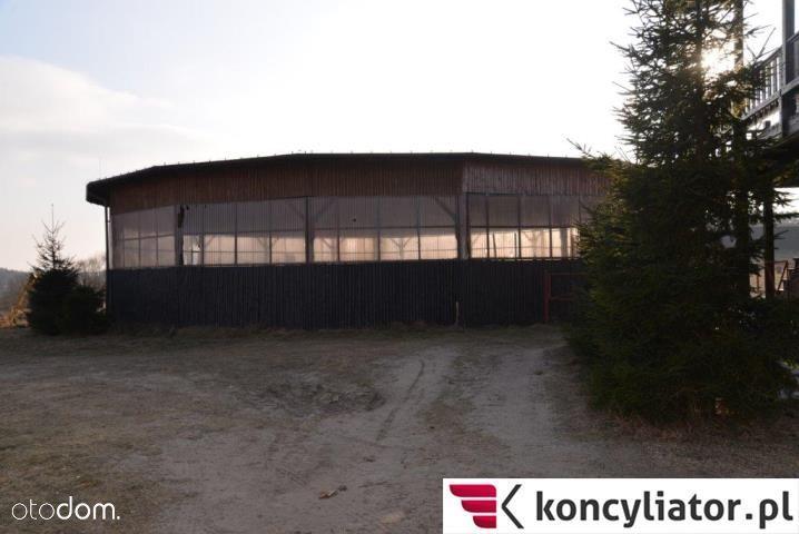 Lokal użytkowy na sprzedaż, Koronowo, bydgoski, kujawsko-pomorskie - Foto 11
