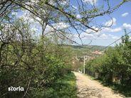Teren de Vanzare, Hunedoara (judet), Hunedoara - Foto 6