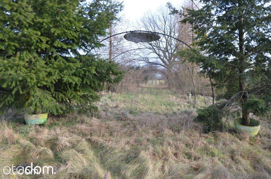 Dom na sprzedaż, Olszyniec, żarski, lubuskie - Foto 9