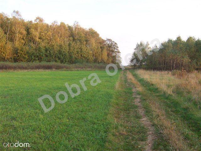 Działka na sprzedaż, Stanisławów, miński, mazowieckie - Foto 3