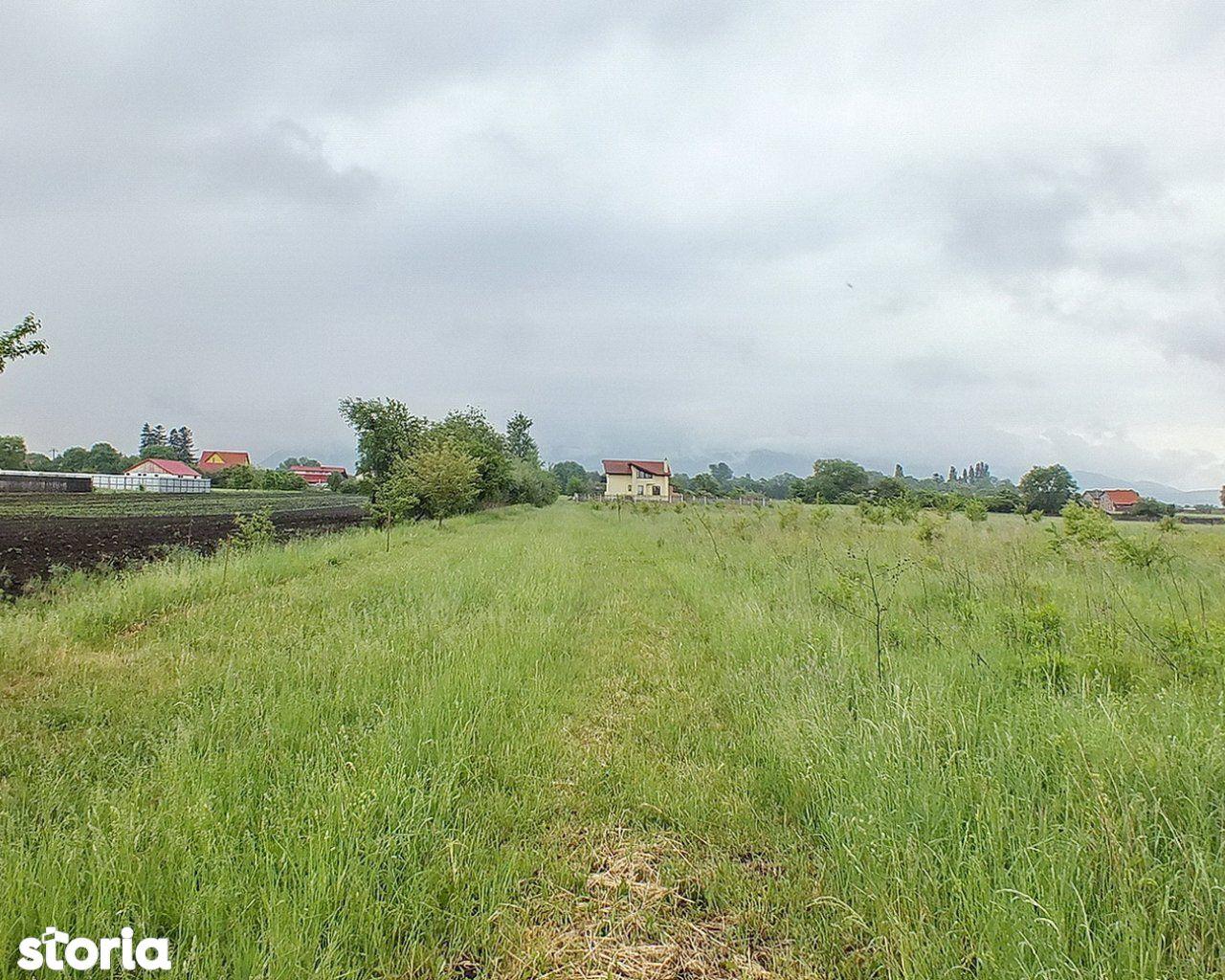 Teren de Vanzare, Brașov (judet), Stupini - Foto 2