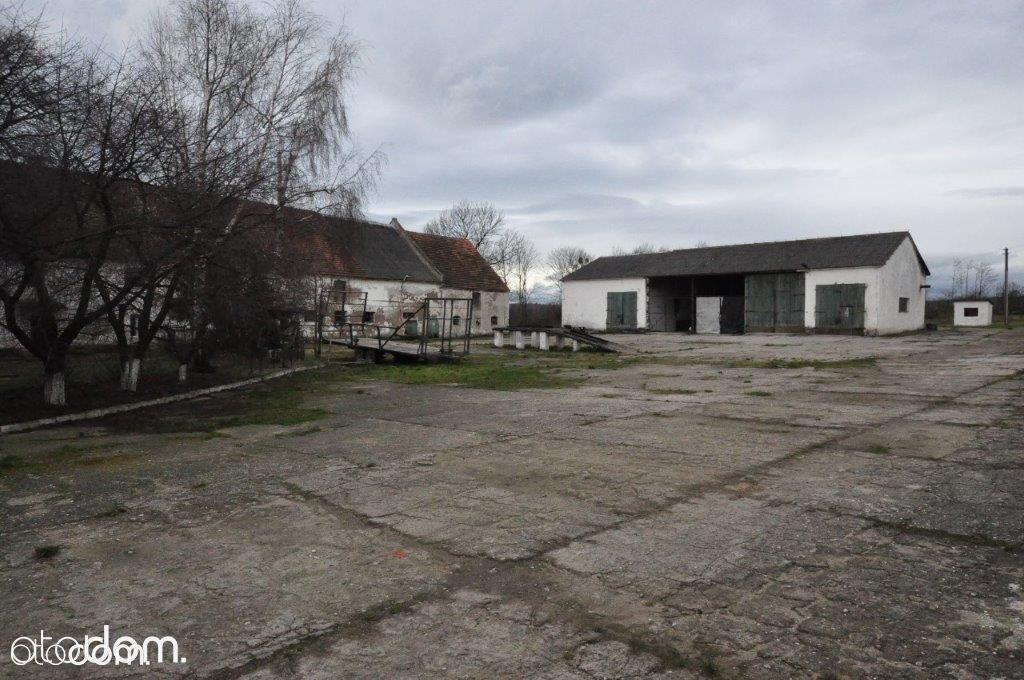 Hala/Magazyn na sprzedaż, Rzymiany, nyski, opolskie - Foto 2