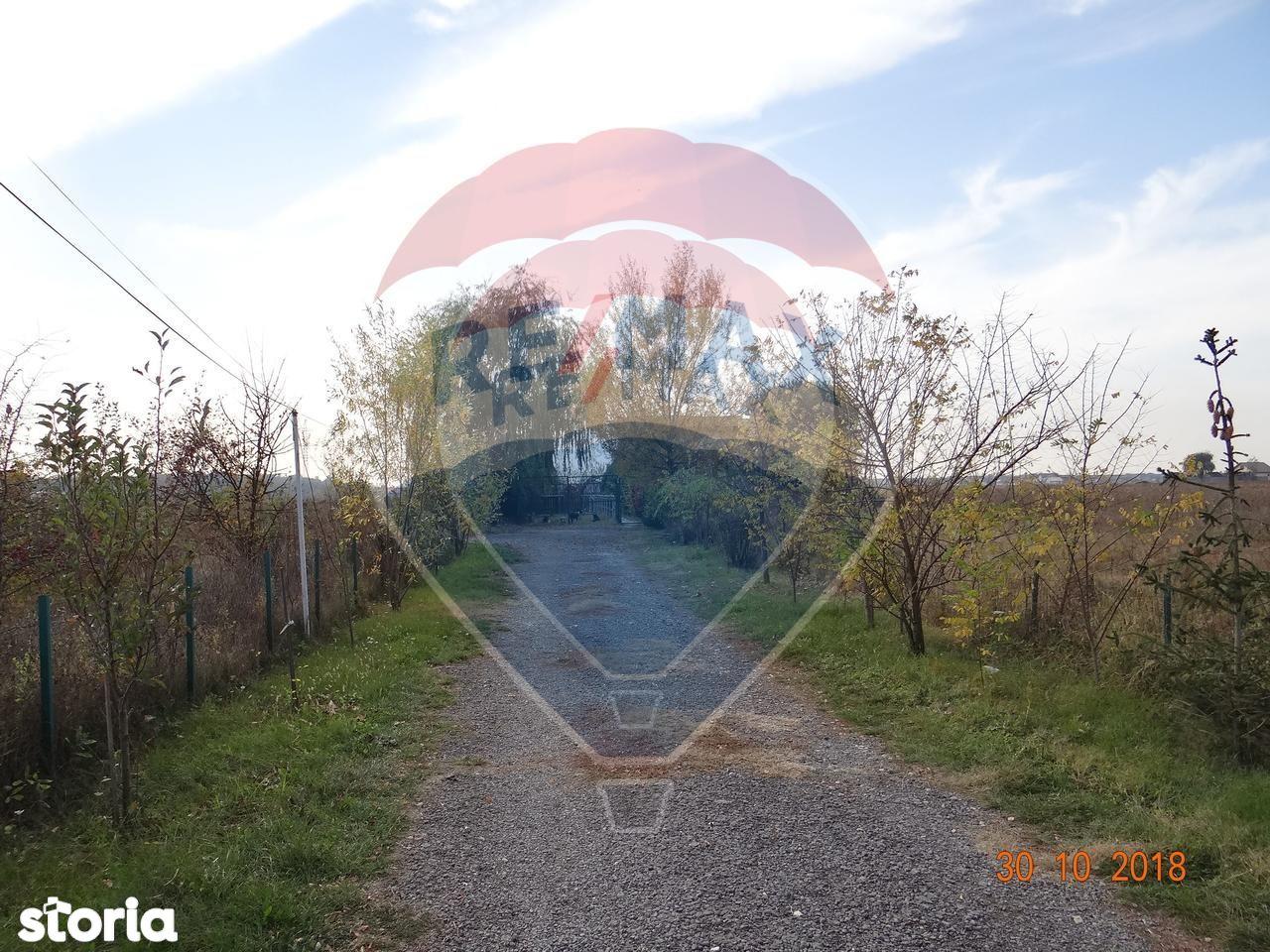 Teren de Vanzare, Ilfov (judet), Strada Stejarului - Foto 8