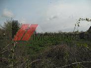 Teren de Vanzare, Fibis, Timis - Foto 4