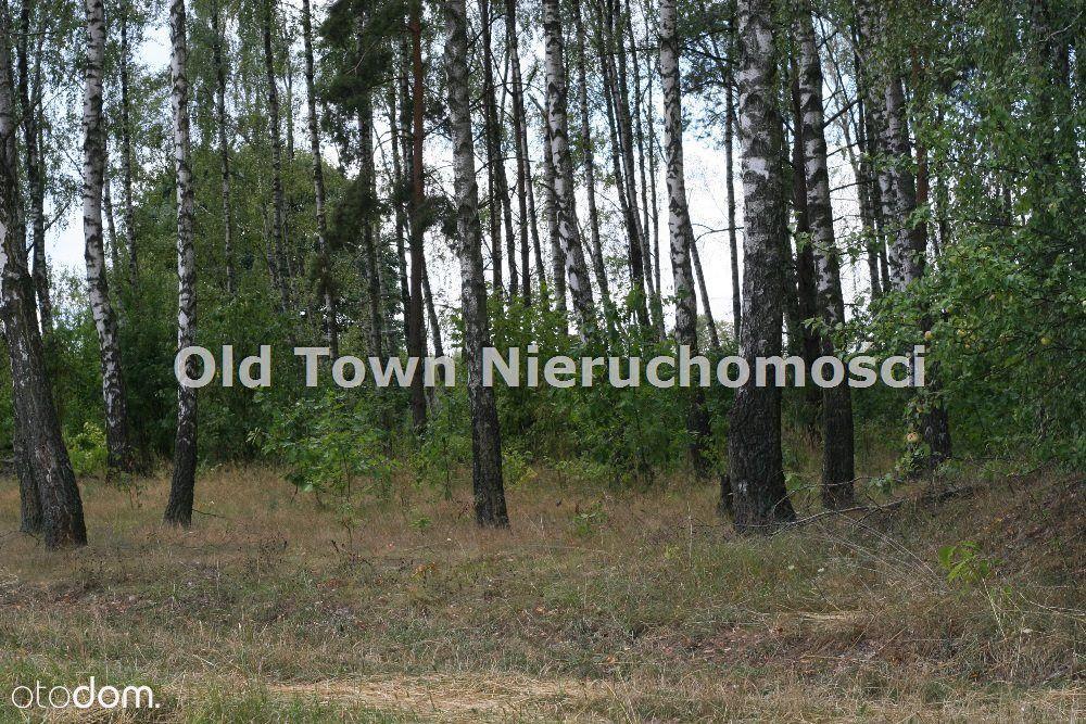 Lokal użytkowy na sprzedaż, Tomaszówka, chełmski, lubelskie - Foto 8