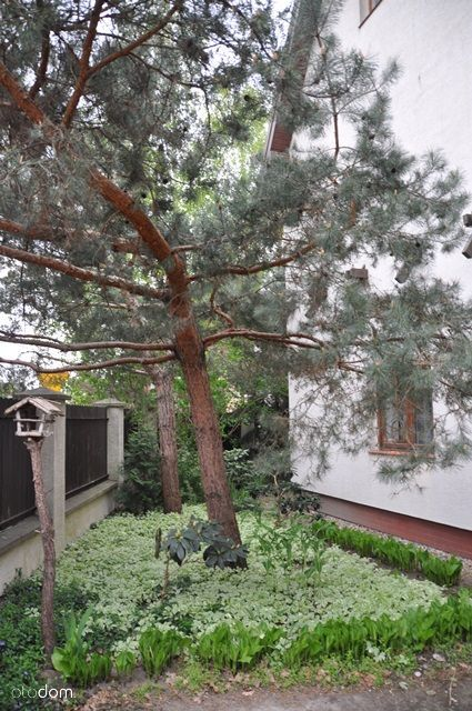 Dom na sprzedaż, Pruszków, Malichy - Foto 12