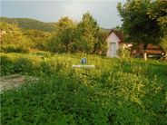 Spatiu Comercial de vanzare, Caraș-Severin (judet), Cuptoare - Foto 18