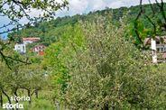 Teren de Vanzare, Sibiu (judet), Cisnădioara - Foto 12