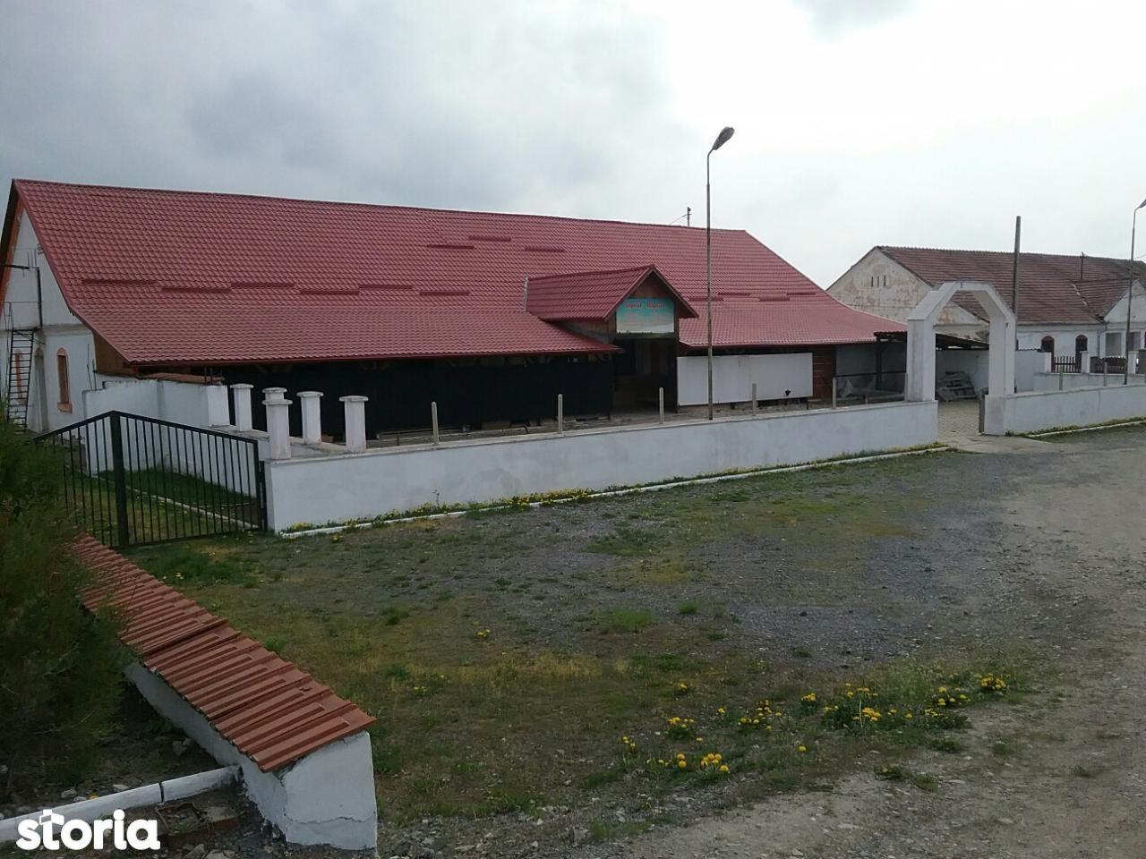 Spatiu Comercial de vanzare, Brașov (judet), Criţ - Foto 17