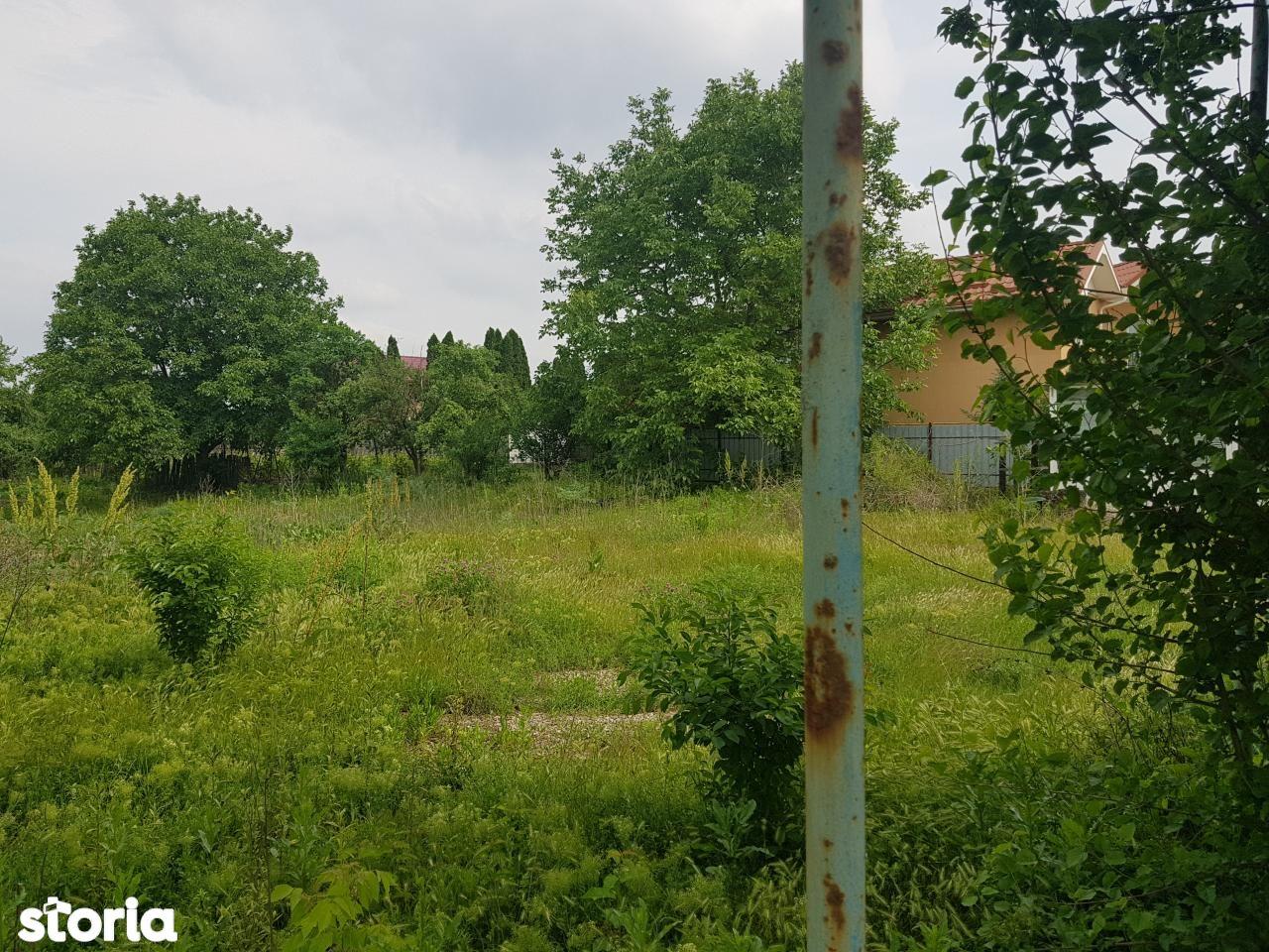 Teren de Vanzare, Bacău (judet), Bacău - Foto 9