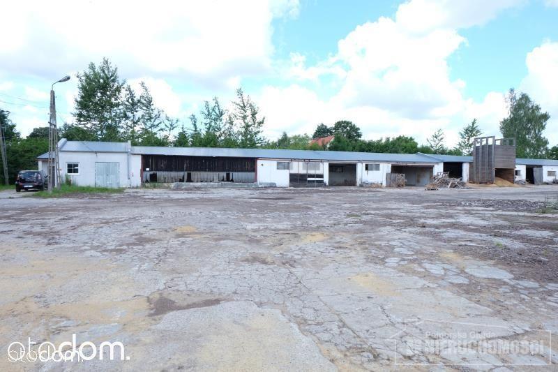 Lokal użytkowy na sprzedaż, Silnowo, szczecinecki, zachodniopomorskie - Foto 6