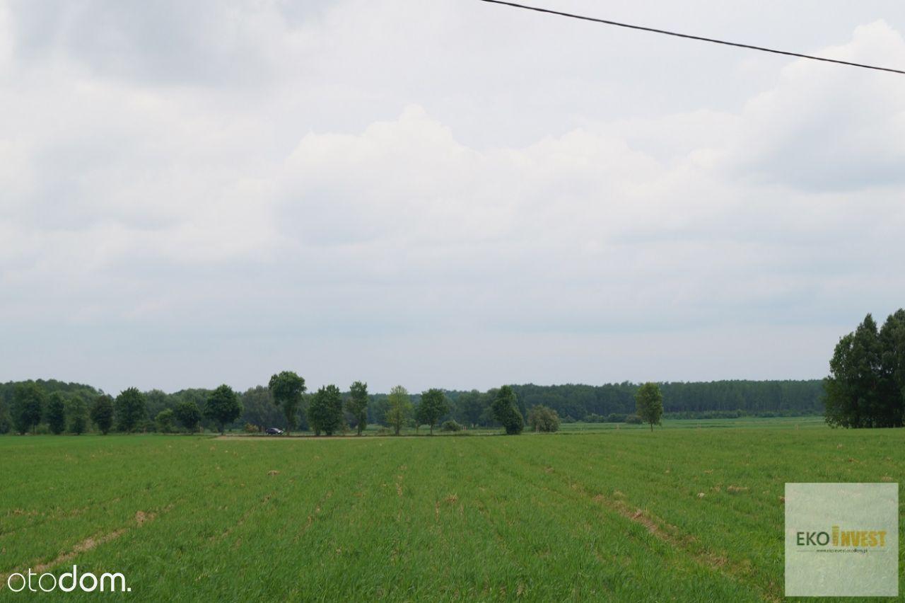 Działka na sprzedaż, Winnica, pułtuski, mazowieckie - Foto 2