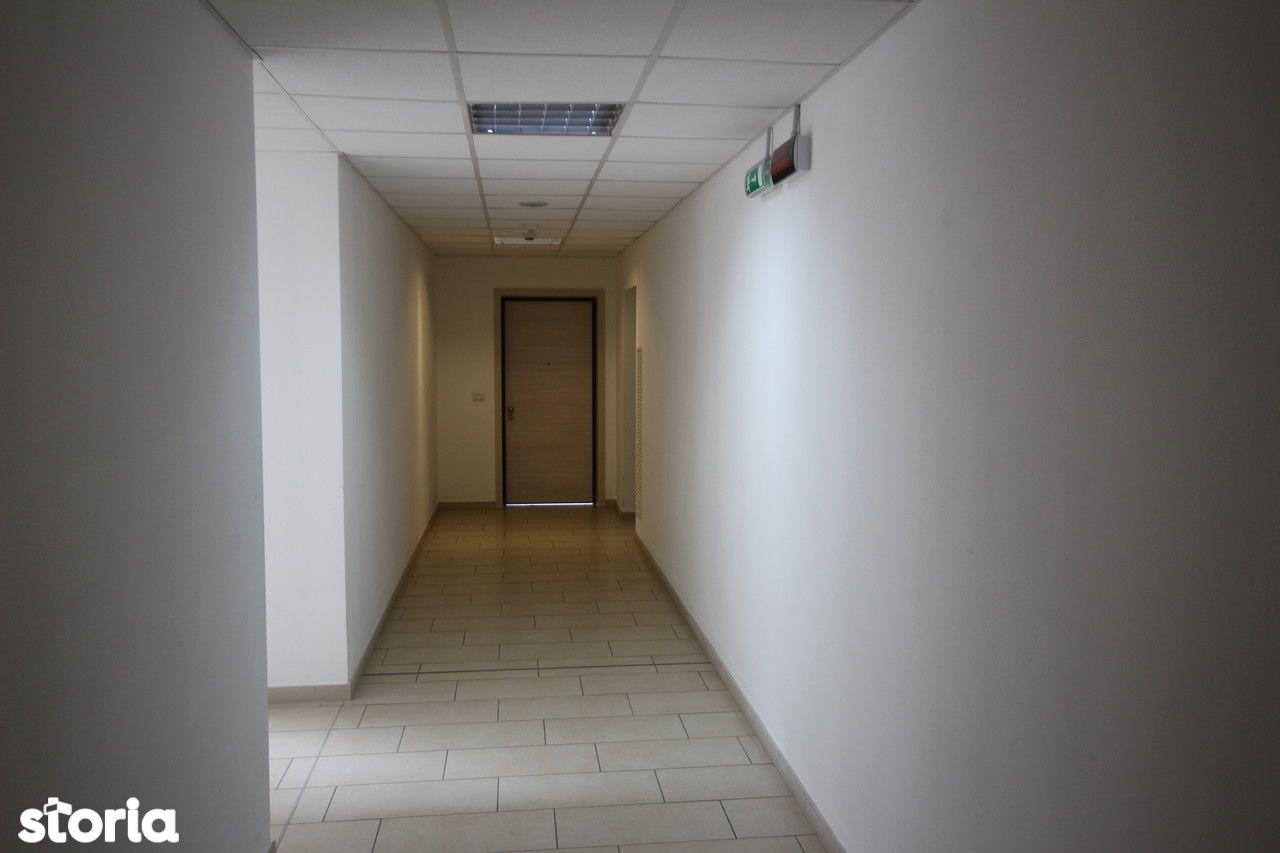 Birou de vanzare, Timiș (judet), Strada Pictor Ion Zaicu - Foto 9