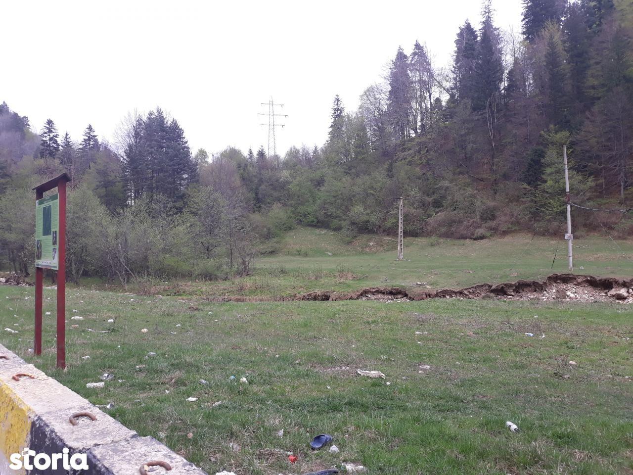 Teren de Vanzare, Brașov (judet), Strada Piatra Mare - Foto 4