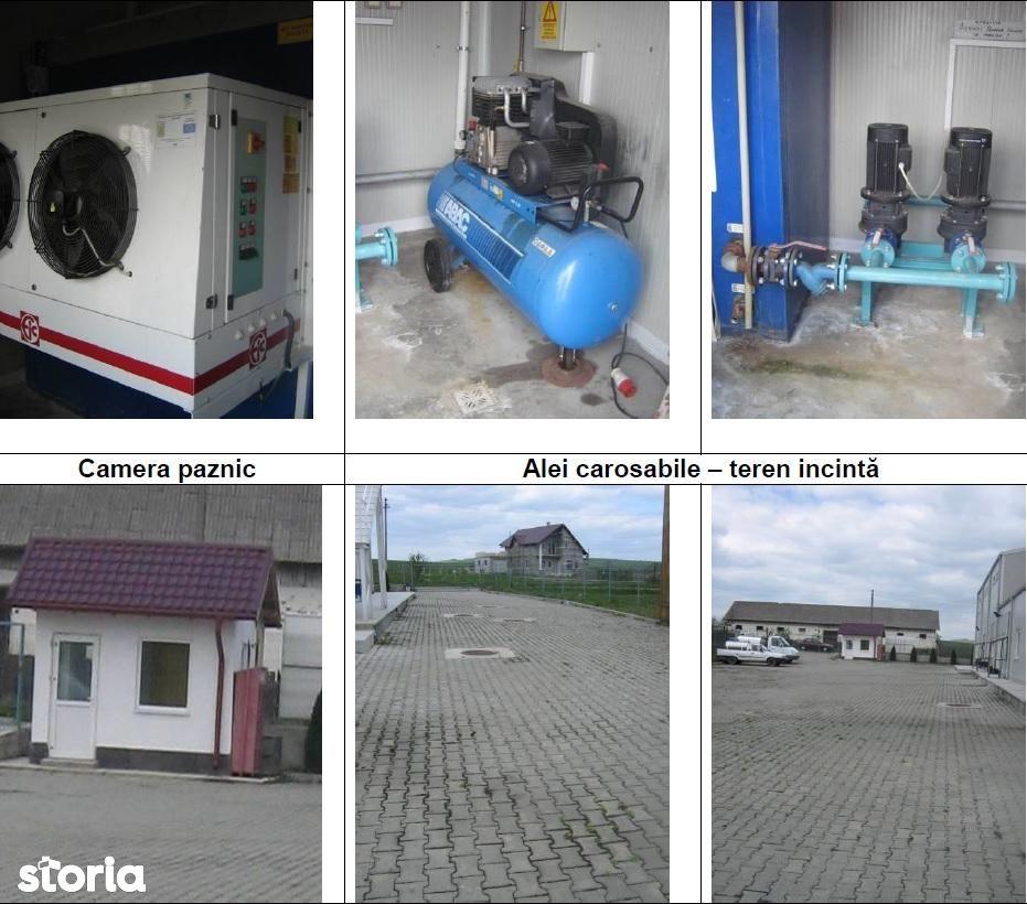 Depozit / Hala de vanzare, Suceava (judet), Bălăceana - Foto 7