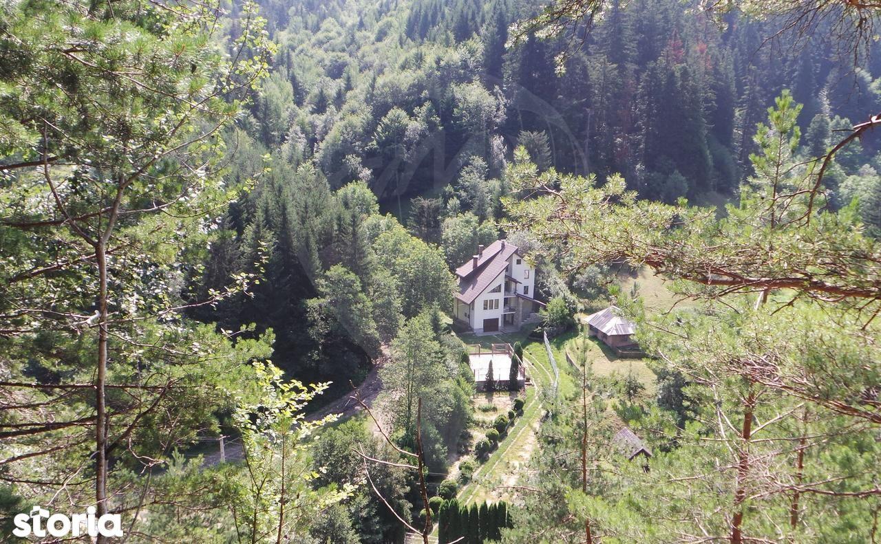 Casa de vanzare, Neamț (judet), Strada Vădurele - Foto 2