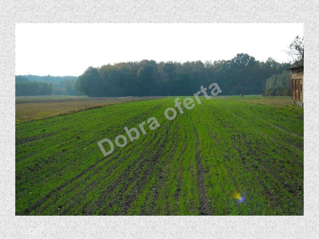 Działka na sprzedaż, Nowe Zalesie, miński, mazowieckie - Foto 3