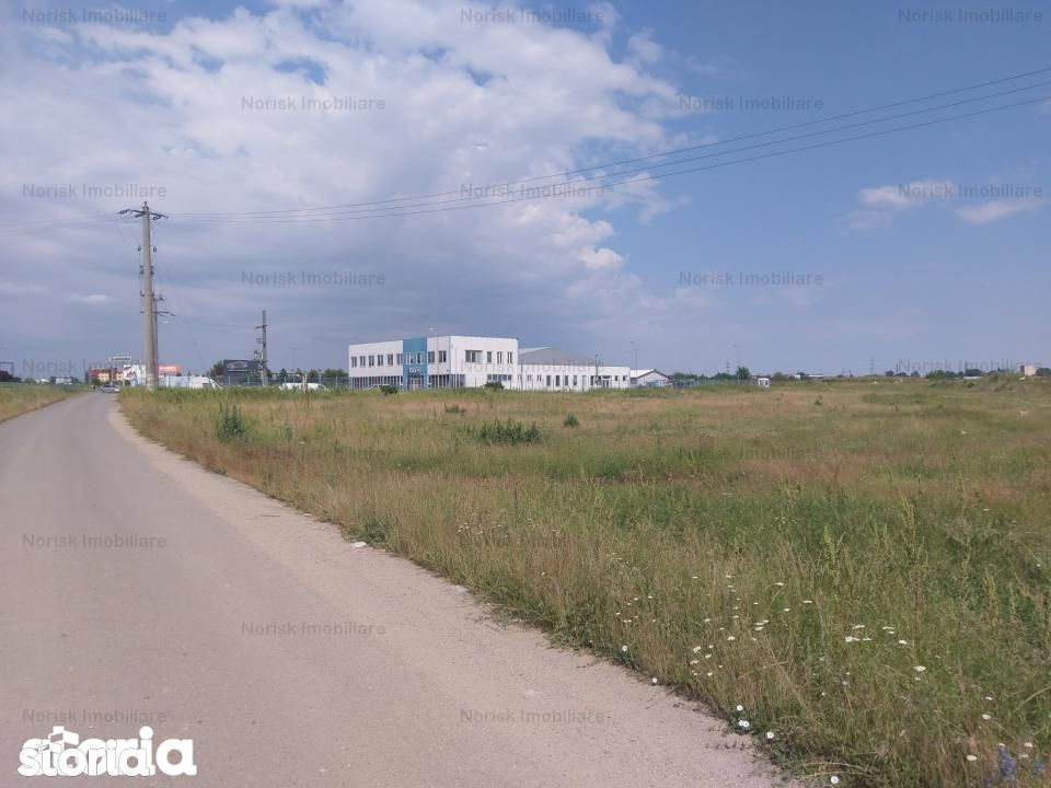 Teren de Vanzare, Catelu, Bucuresti - Ilfov - Foto 1