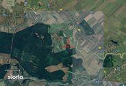 Teren de Vanzare, Ilfov (judet), Micşuneştii-Moară - Foto 1