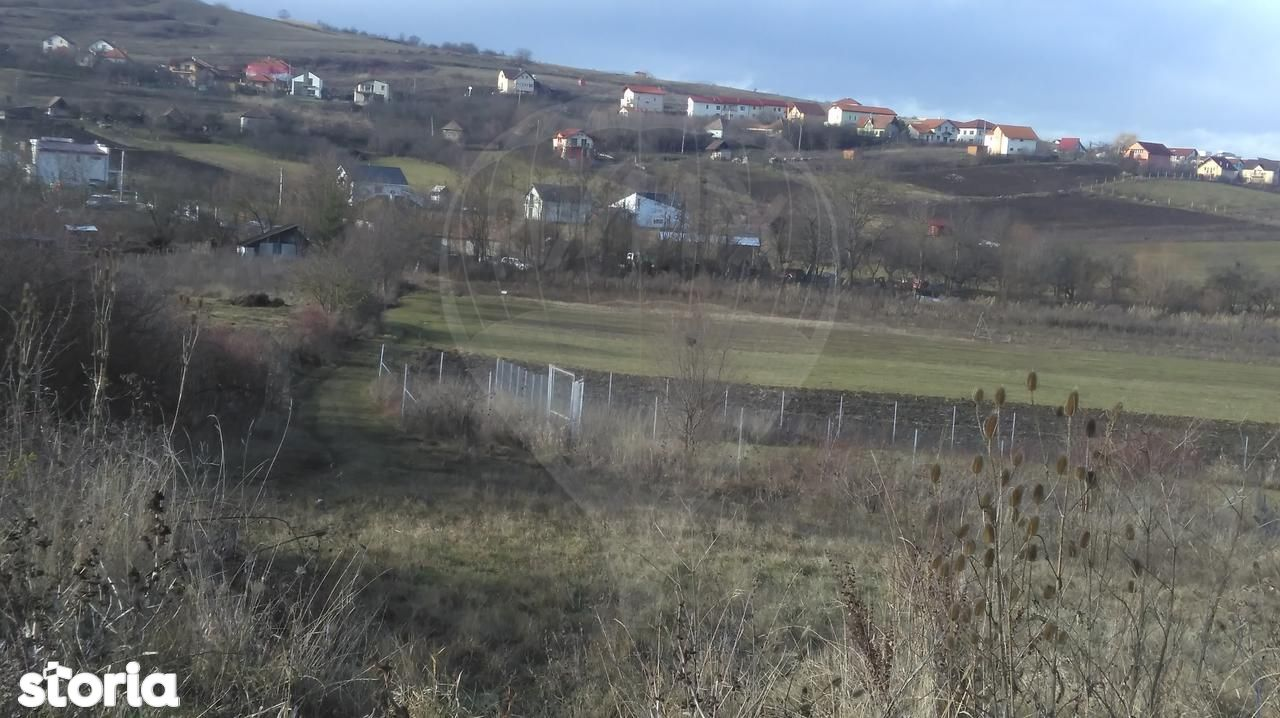 Teren de Vanzare, Cluj (judet), Colonia Borhanci - Foto 4