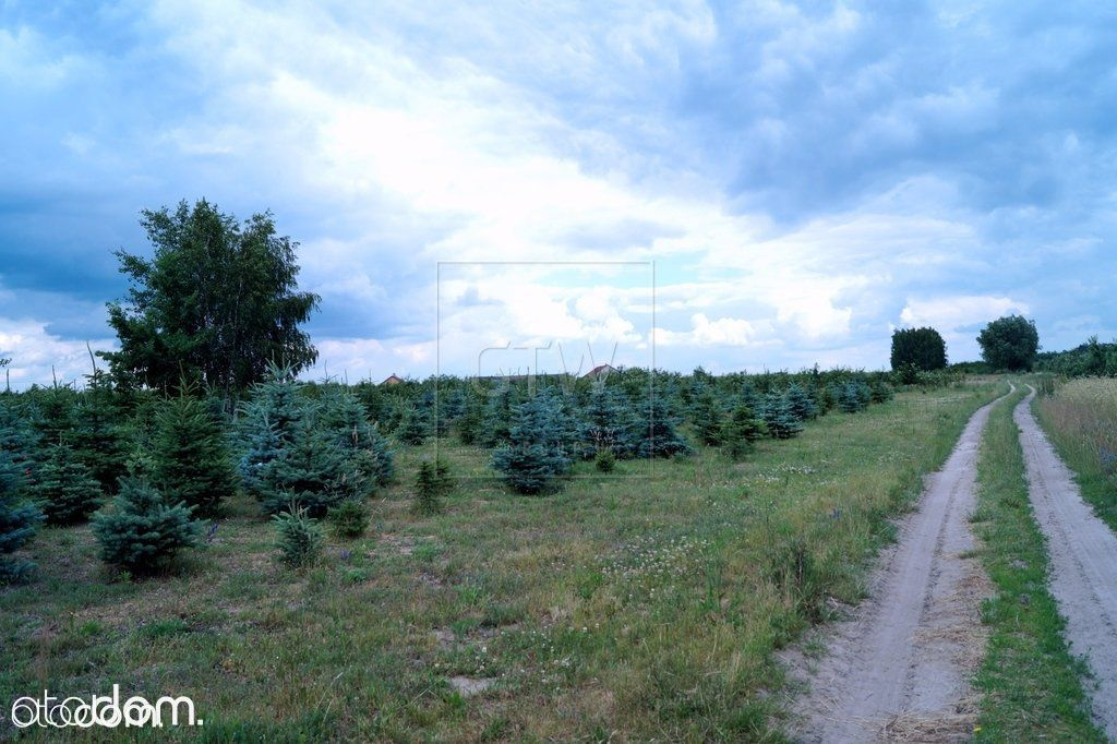 Działka na sprzedaż, Miedzechów, grójecki, mazowieckie - Foto 6