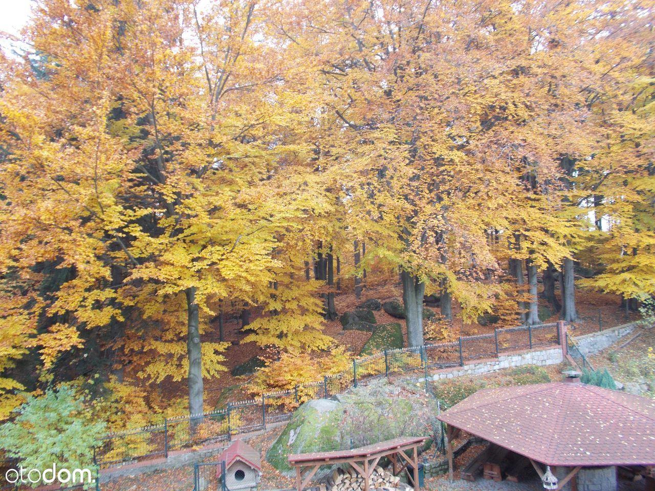 Dom na sprzedaż, Szklarska Poręba, jeleniogórski, dolnośląskie - Foto 19