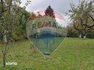 Teren de Vanzare, Maramureș (judet), Piatra - Foto 7