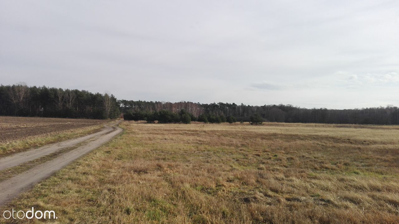 Działka na sprzedaż, Jelcz-Laskowice, oławski, dolnośląskie - Foto 1