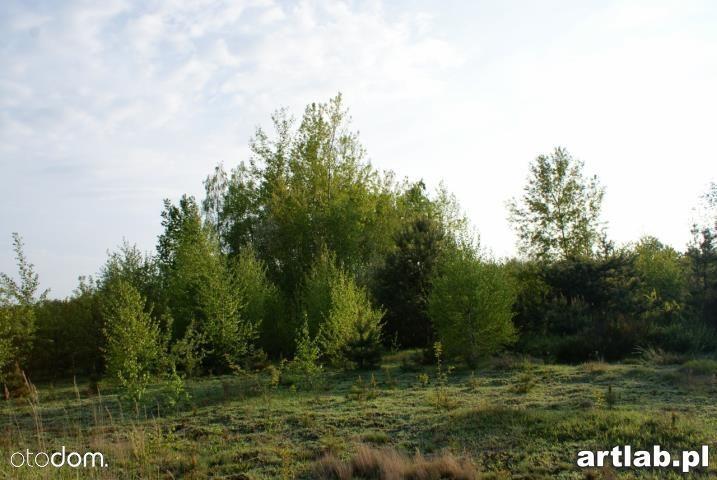 Działka na sprzedaż, Natalin, grójecki, mazowieckie - Foto 11