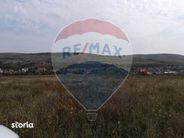 Teren de Vanzare, Cluj (judet), Chinteni - Foto 2