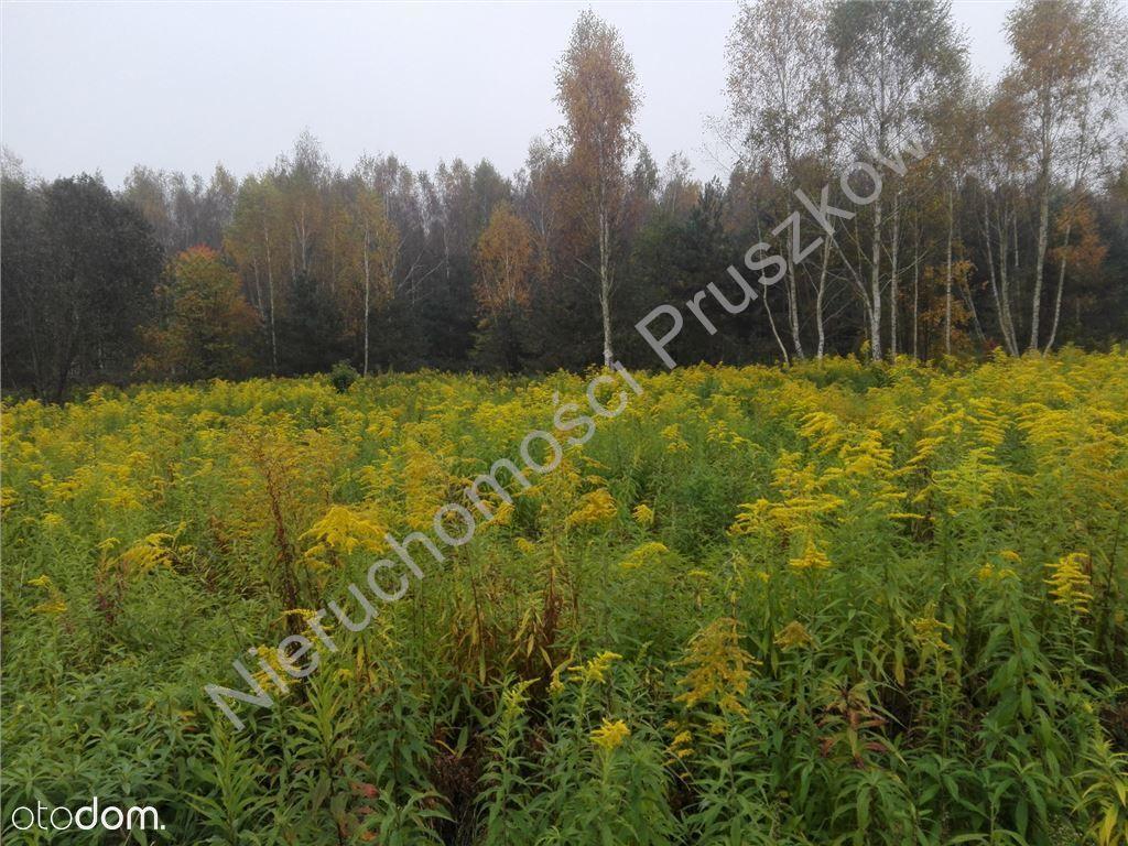 Działka na sprzedaż, Strzeniówka, pruszkowski, mazowieckie - Foto 3