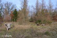 Dom na sprzedaż, Olszyniec, żarski, lubuskie - Foto 5