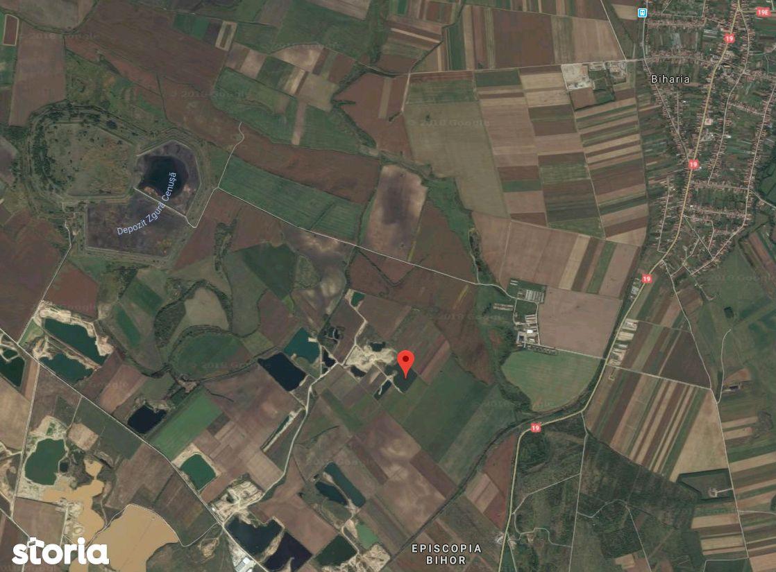 Teren de Vanzare, Bihor (judet), Calea Aradului - Foto 1