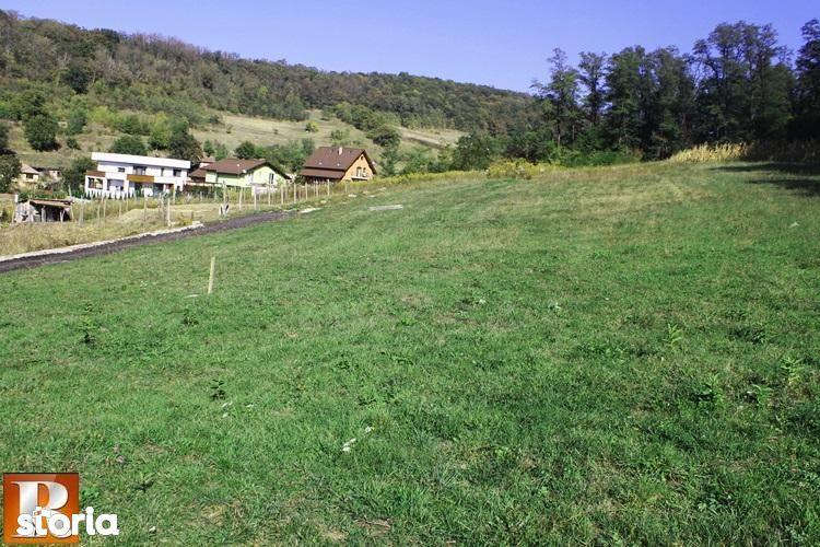 Teren de Vanzare, Medias, Sibiu - Foto 4