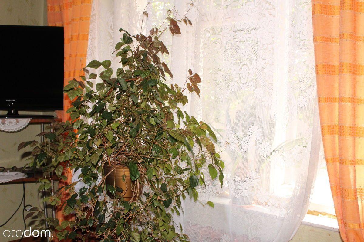 Dom na sprzedaż, Kolsko, nowosolski, lubuskie - Foto 7