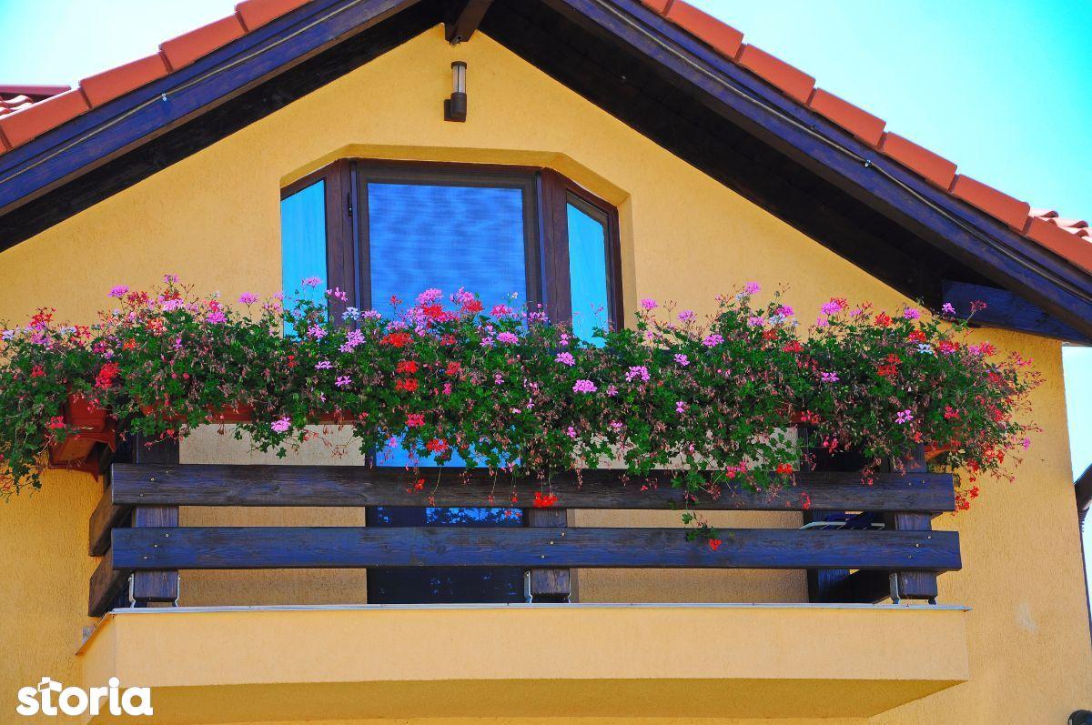 Teren de Vanzare, Satu Mare (judet), Dorolţ - Foto 17