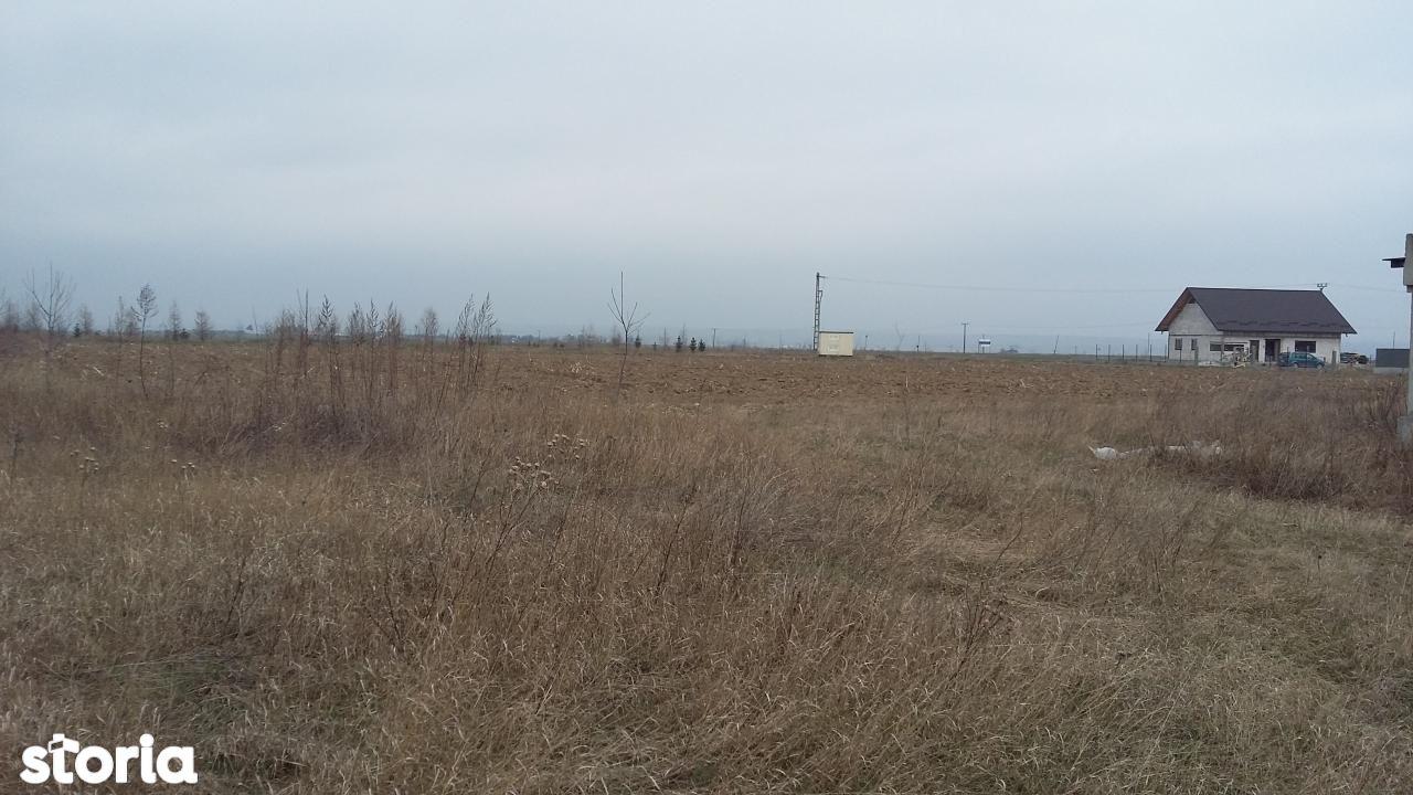 Teren de Vanzare, Suceava (judet), Dumbrăveni - Foto 2