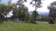 Teren de Vanzare, Prahova (judet), Comarnic - Foto 1