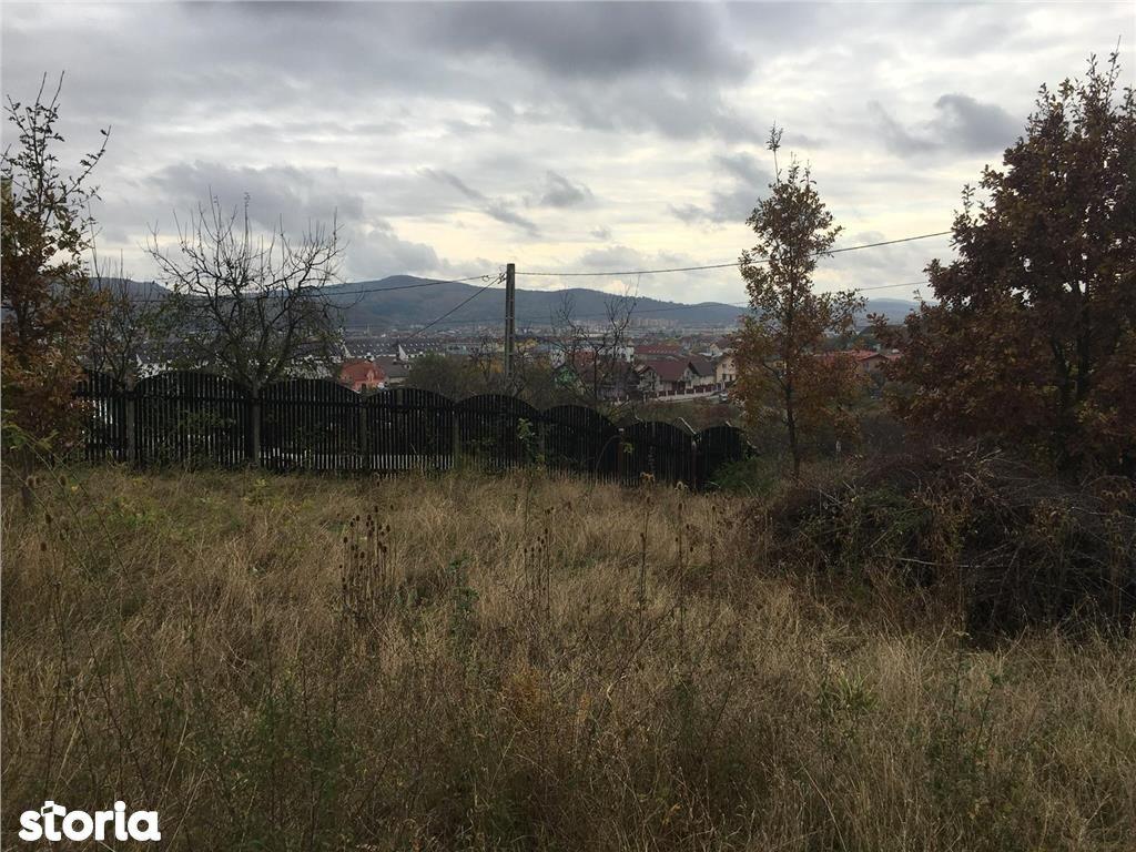 Teren de Vanzare, Bistrița-Năsăud (judet), Strada Ulmului - Foto 8
