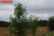 Działka na sprzedaż, Staniszów, jeleniogórski, dolnośląskie - Foto 3