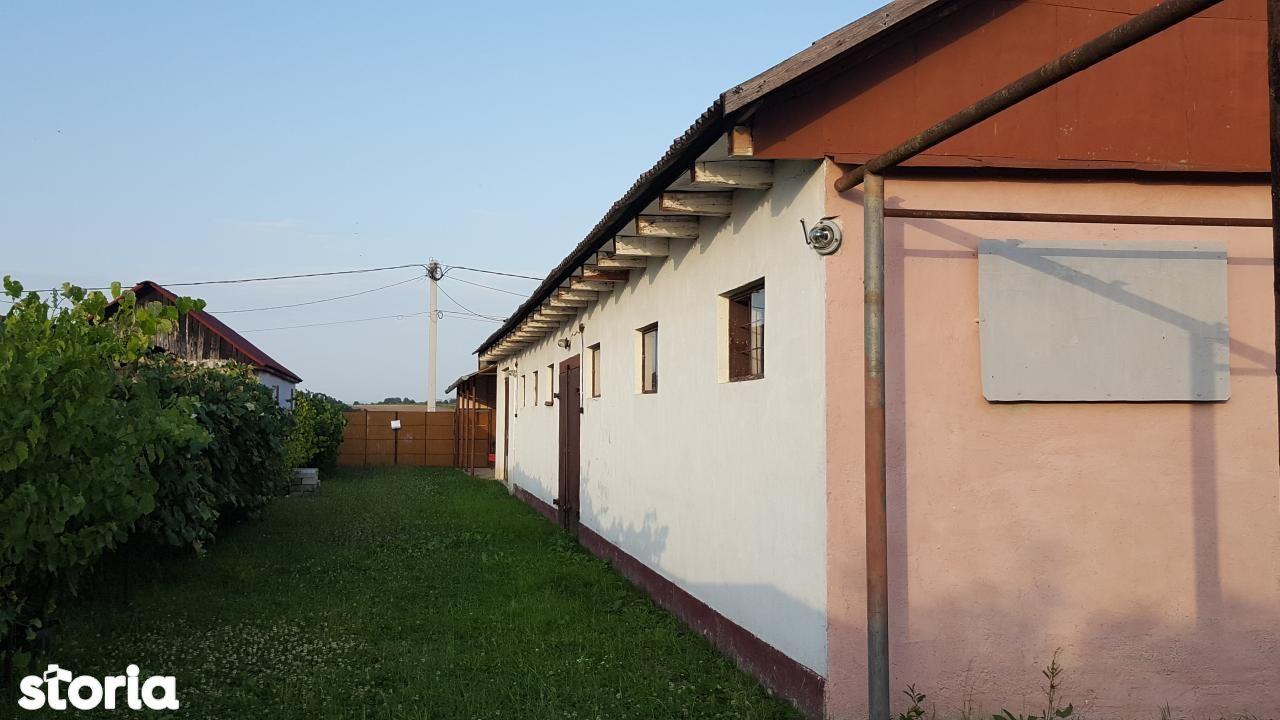 Casa de vanzare, Bihor (judet), Copăcel - Foto 4