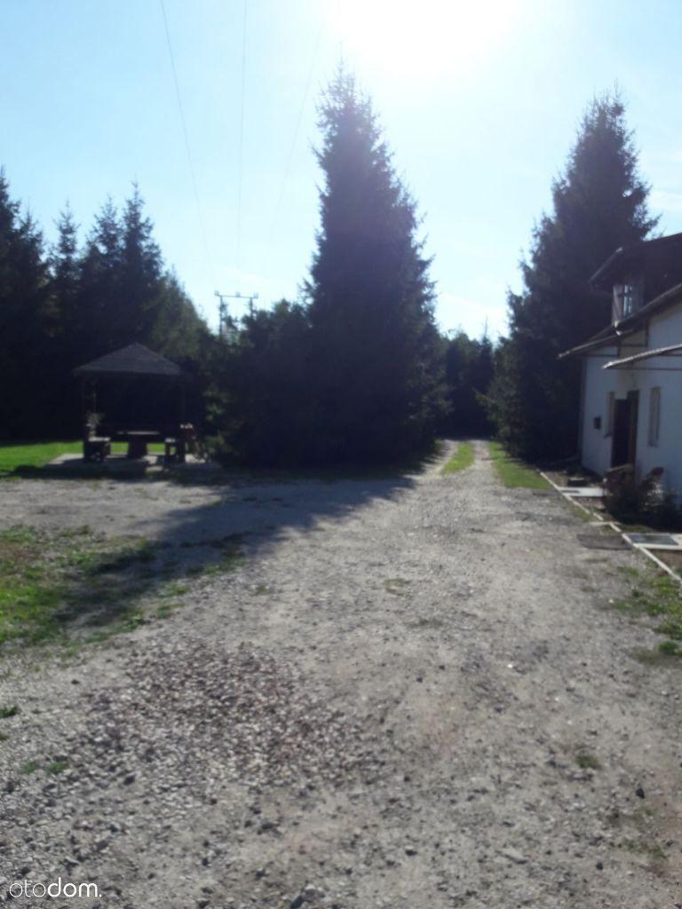 Dom na wynajem, Żabia Wola, grodziski, mazowieckie - Foto 15