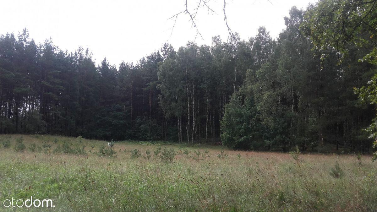 Działka na sprzedaż, Donimierz, wejherowski, pomorskie - Foto 2