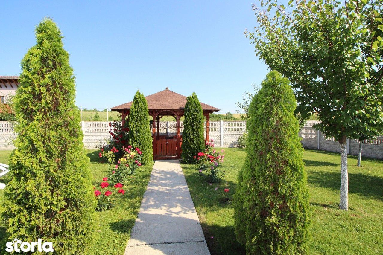 Casa de vanzare, Timiș (judet), Sălciua Nouă - Foto 14