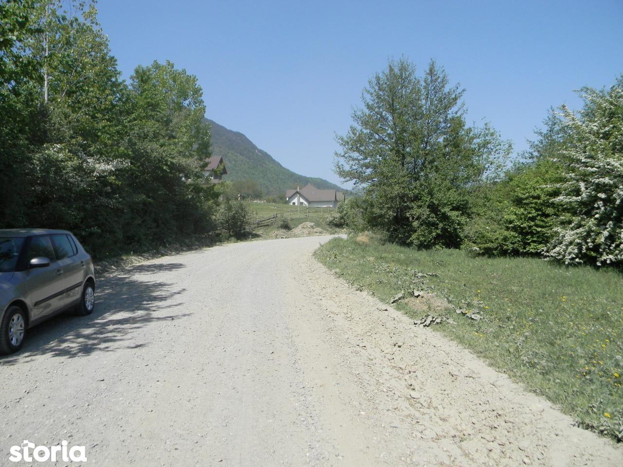 Teren de Vanzare, Brașov (judet), Braşov - Foto 1